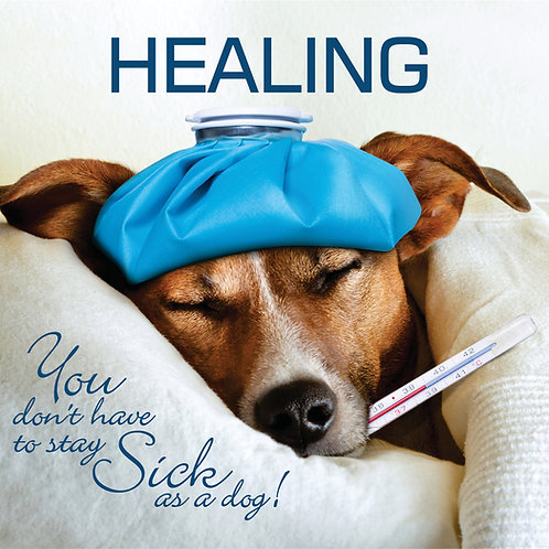 HEALING - You Don't have to stay sick as a dog