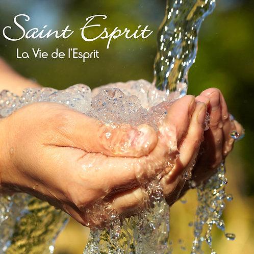SAINT ESPRIT - La Vie de l'Esprit
