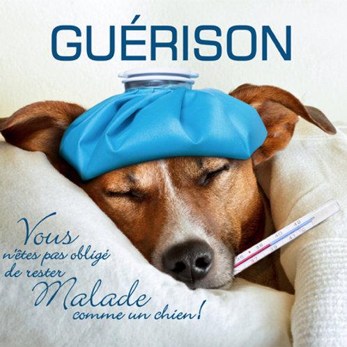 GUÉRISON - Vous n'êtes pas obligé de rester malade comme un chien