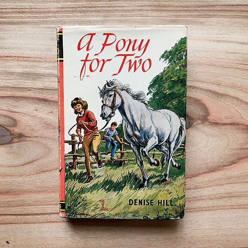A Pony For Two - Folding Book Lamp