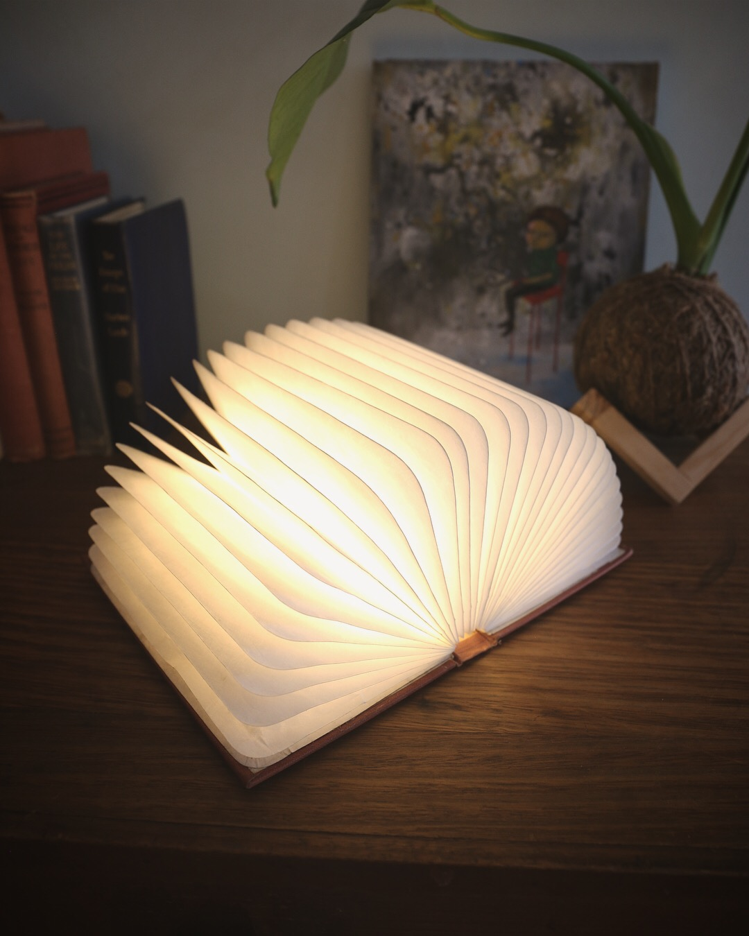 Portable Book Lamp