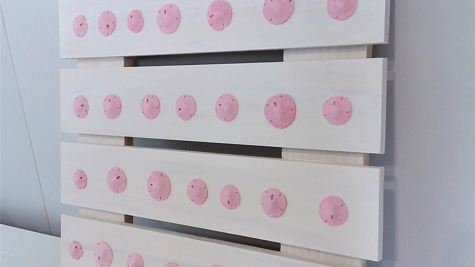 Pink Sand Dollars on Plaque for Gender Reveal