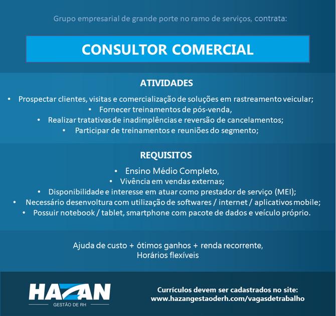 Consultor Comercial