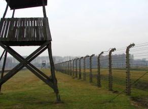 Spotlight: Stand Together; International Holocaust Memorial Day