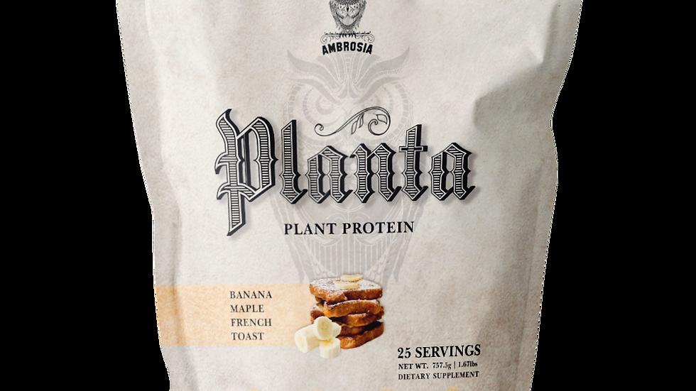 Planta Protein Powder - 7 flavors