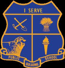 Gulgong Public School - Create & Play