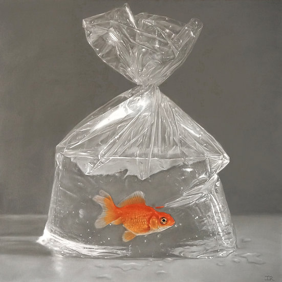 GOLDFISH IN A BAG