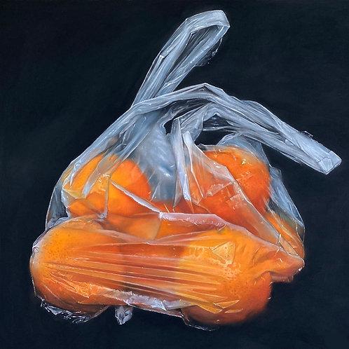 BAG OF ORANGES  sold