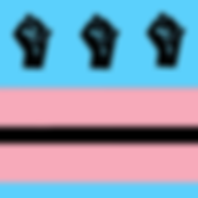 staywokedc_transflag.png