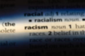 racism word in a dictionary. racism conc