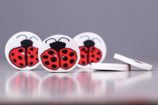 botoes-personalizados-em-ceramica-plastica-eduK_CAMILA_SR-187.jpg