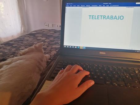 Teletrabajo: minimiza sus inconvenientes