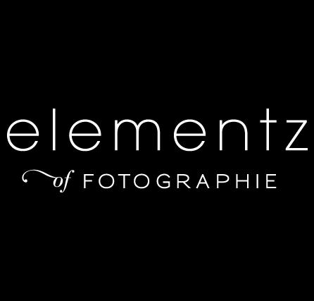 Elementz of Fotographie