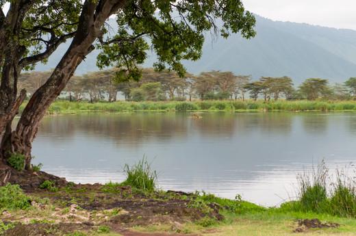 Lake Makat