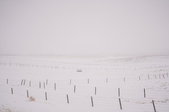 prairie-11.jpg