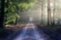the-road-815297_1920.jpg