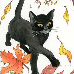 Mooncat loved to chase them, leaping and pouncing to make them rustle and crunch!