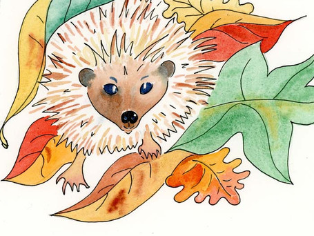 Master Prickles Looked Out