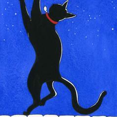 Mooncat dances in the garden at night