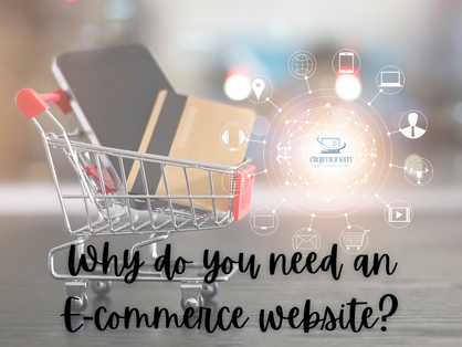 Why do you need an E-Commerce website for your Business?