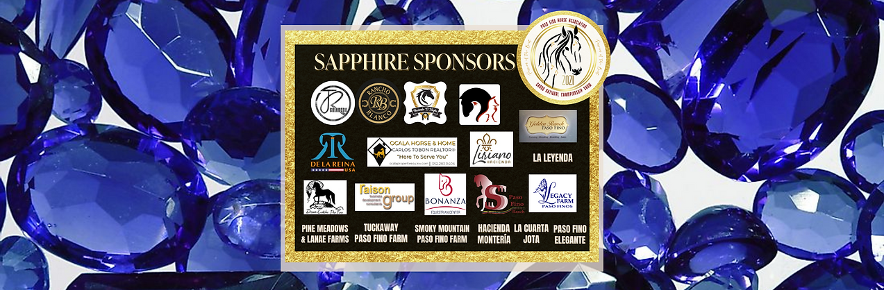 Copy of Sapphire Sponsors.png
