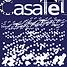 casatel_logo_96-e1431340260941.png