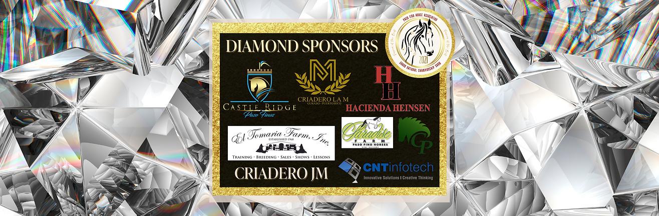 Copy of Copy of Copy of Diamond Sponsors (1).png