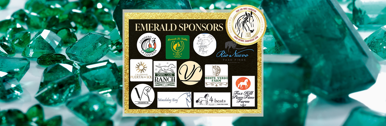 updated of Emerald Sponsor Post (2).png