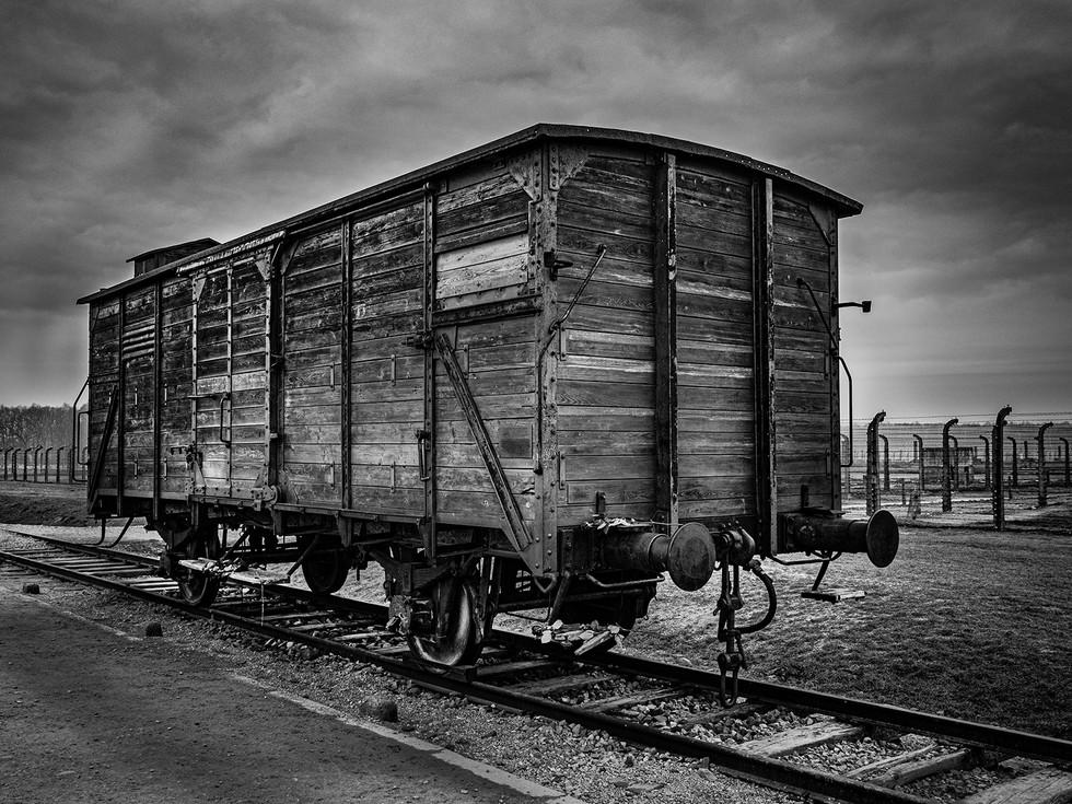 MONO - Death Cart by Shane Trueman ( 9 marks)