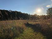 Labyrinth path in prairie.jpg