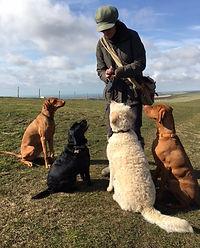 Lewes dog walker