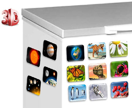 3D (Fridge) Magnets, 3D Stationary