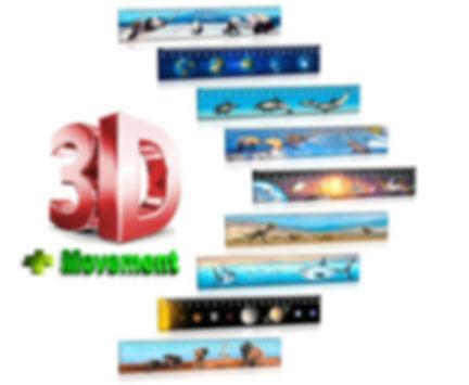 3D Rulers, 3D Stationary