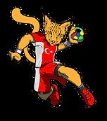 kedi-ters.png