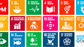 UN SDGs Making Fund Managers Feel Like Muppets