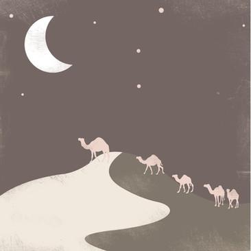 Camel in the Starlight