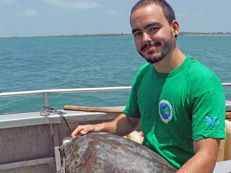 My PhD with the sea turtles from the Bijagós Archipelago, Guinea-Bissau – Part I, the Hawksbill