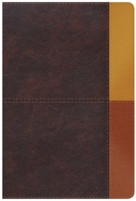 Biblia de Estudio Arco Iris Cocoa/Terrac Ind