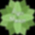 לוגו 3.5.png