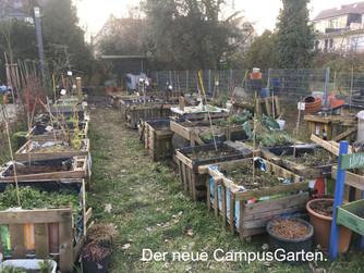 CampusGarten: Wenn Pflanzen umziehen