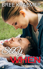 SW1 new ebook cover.jpg
