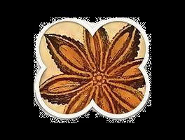 herb-bunga-lawang_edited.png