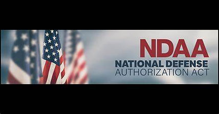 NDAA Slick Horiz Logo.jpg