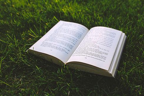 book-grass.jpg