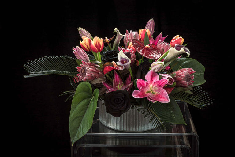 Clotilda (Floral Portrait)