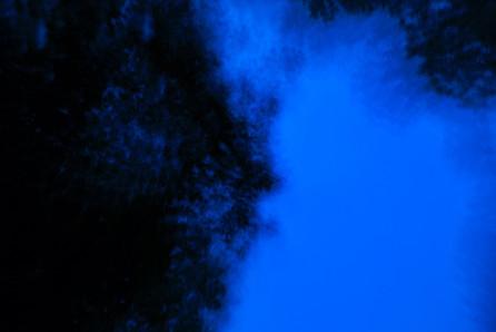 Blue dream 1