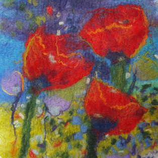 'Wild Poppies'
