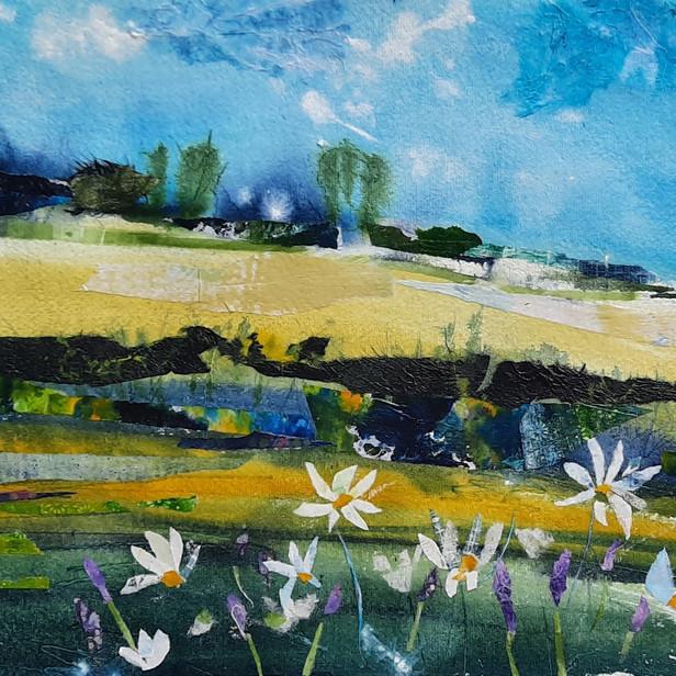 Across the Barley Fields