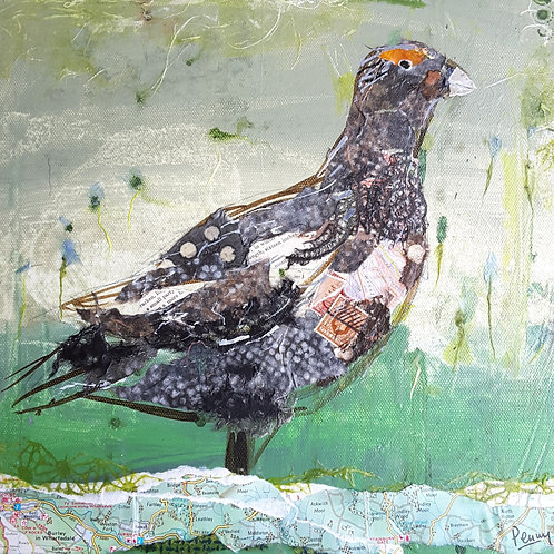 'Big Grouse' greeting card
