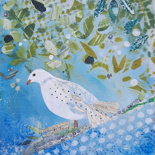 Peaceful Dove Christmas card